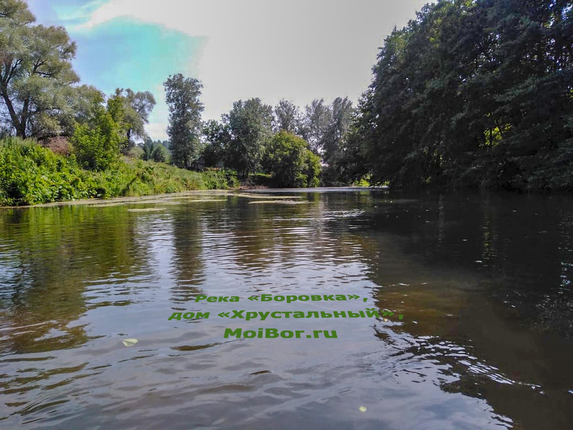 Река Боровка