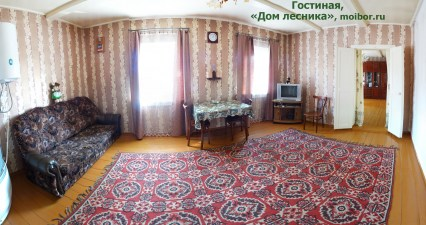 1-main-room-lesnika