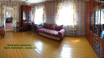 2-big-room-lesnika